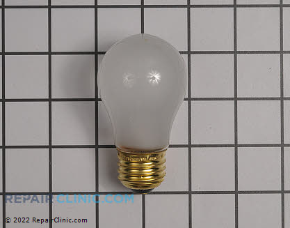 Light Bulb 316539001       Main Product View