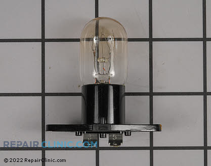 Light Bulb WB25X10025 Main Product View