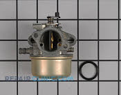 Carburetor - Part # 1641355 Mfg Part # 492498