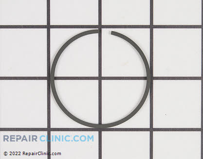 Piston Ring 10001108360 Main Product View