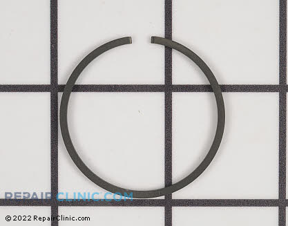 Piston Ring 10001109560 Main Product View