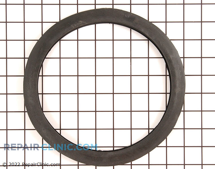 Pump Gasket 5300809008 Alternate Product View