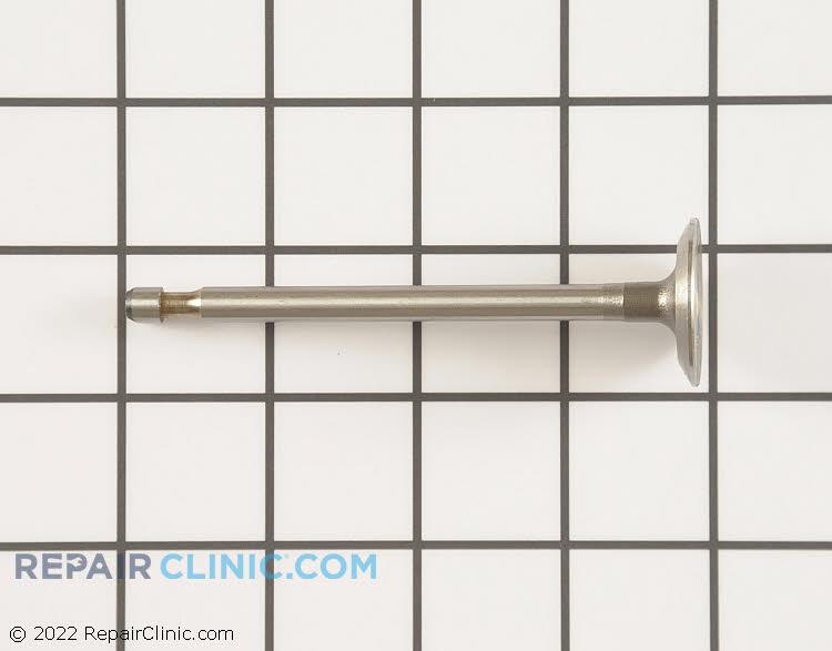 Intake valve