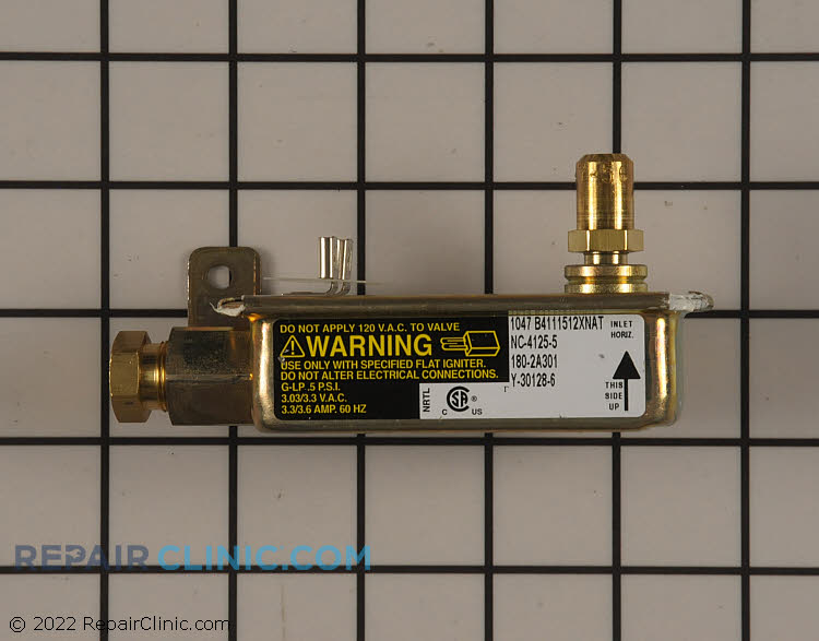 Safety Valve WB21X10137      Alternate Product View