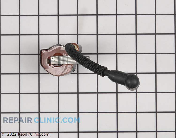 Ignition Coil 530039137 Alternate Product View