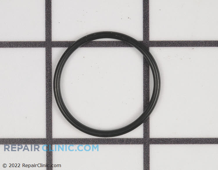 O-Ring 10493360PGS Alternate Product View